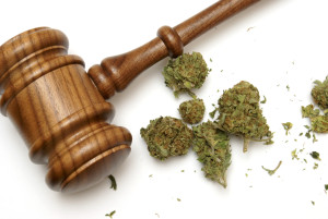 Marijuana and gavel