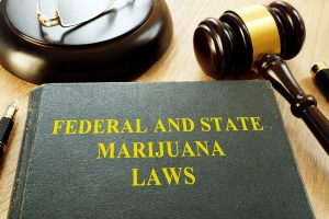 Marijuana-Laws-book-300x200